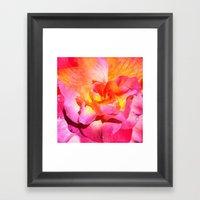 Rose Book 9 Framed Art Print