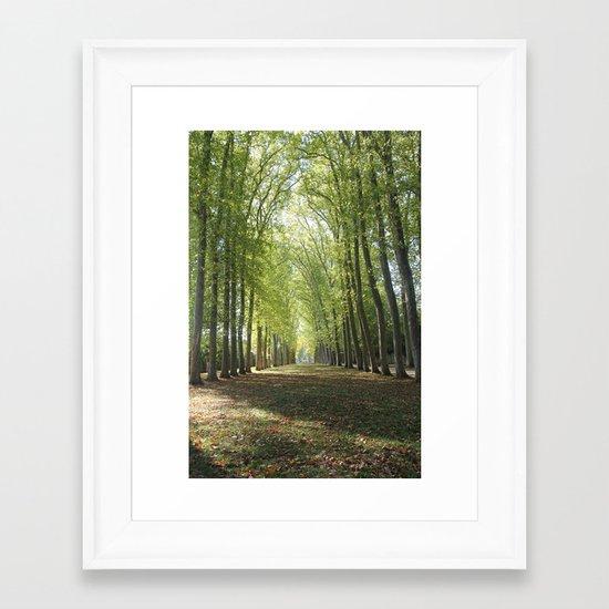 Forests of Versaille Framed Art Print