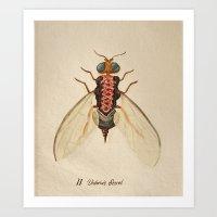 Urban Bug #2 Art Print