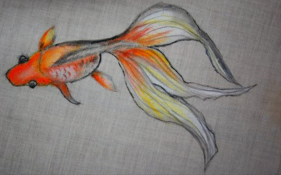 Goldfish Pond (close up #6) Art Print