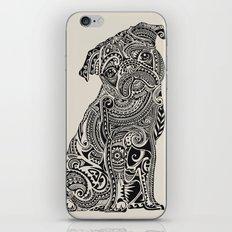 Polynesian Pug  iPhone & iPod Skin