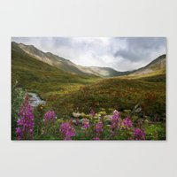 Fireweed & Fall In Alask… Canvas Print
