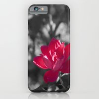 iPhone & iPod Case featuring Pretty In Pink by Corinne Morris