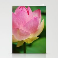Lotus Blossom Flower 26 Stationery Cards