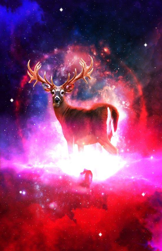 Cosmic Deer Art Print