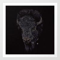 Bison / Buffalo Art Print