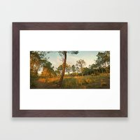 Goodnight Sun ! Framed Art Print