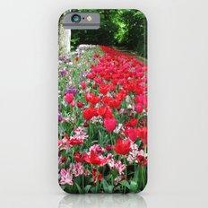 Tulips Path iPhone 6 Slim Case
