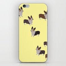 yellow corgis iPhone & iPod Skin
