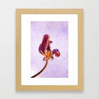 gold & purple Framed Art Print