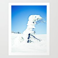 Snow Blown Art Print
