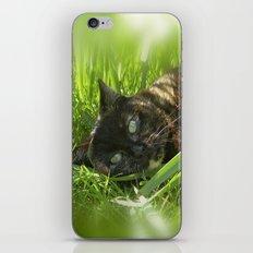 wild cat III iPhone & iPod Skin