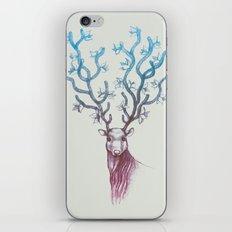 Reign iPhone & iPod Skin
