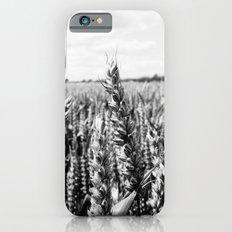 Summer Fields #5 iPhone 6 Slim Case
