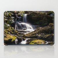 Mill Creek Falls iPad Case