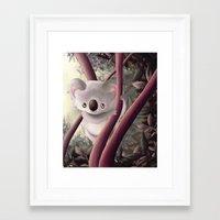 Kappa Koala Framed Art Print