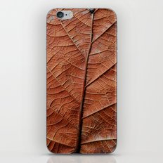 Hoja iPhone & iPod Skin