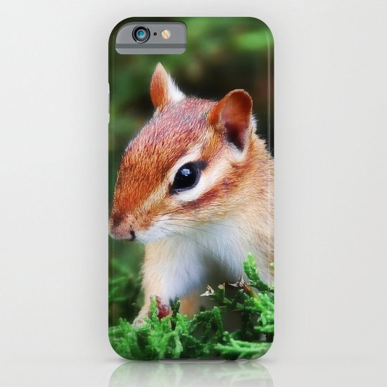 Chipmunk iPhone & iPod Case