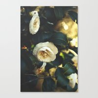 Beautiful Life Canvas Print
