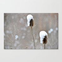 Snow Frosting Canvas Print