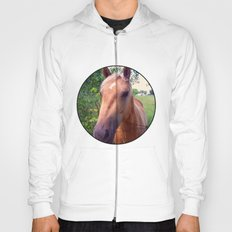 Behind the Fence Hoody
