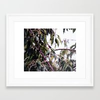 tree fairy Framed Art Print