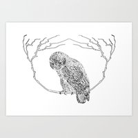 Owl In Tree (Print) Art Print