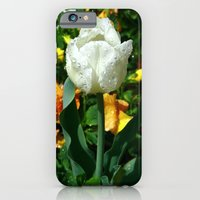 iPhone & iPod Case featuring Tulip after the Rain by Joanna  Pickelsimer