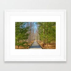 Jesup Boardwalk Trail Framed Art Print