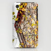 iPhone 3Gs & iPhone 3G Cases featuring Somewhere in Rhode Island - Abandoned Mill 003 by Lon Casler Bixby