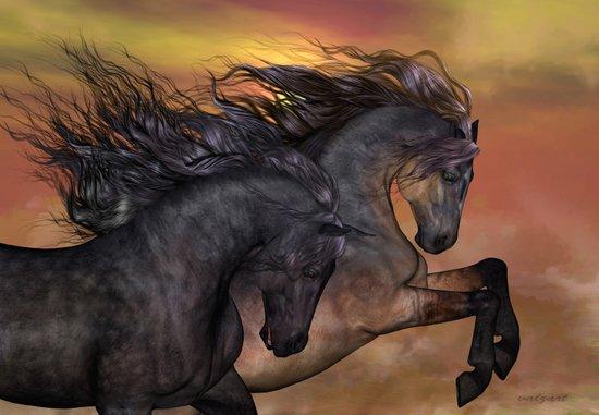 HORSES - On sugar mountain Art Print