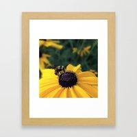 Lone Bee Framed Art Print