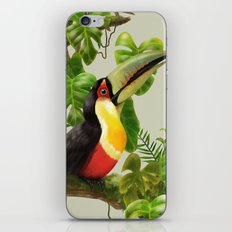 Toucans and Bromeliads (Canvas Background) iPhone & iPod Skin