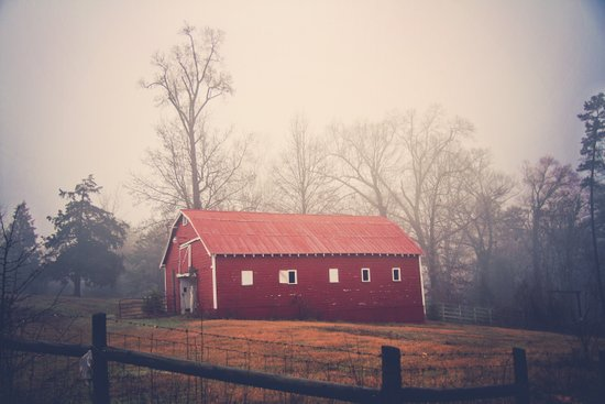 Little Red Barn in the Fog Art Print