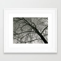 Withered Away Framed Art Print