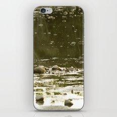 Cove by the lake iPhone & iPod Skin
