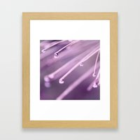 Drops of Purple Framed Art Print