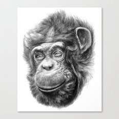 Wise Chimp SK067 Canvas Print
