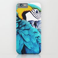 iPhone & iPod Case featuring Parrot Life by tiff_panda
