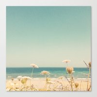 Water and Lace Canvas Print
