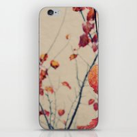Contrasted Fall iPhone & iPod Skin