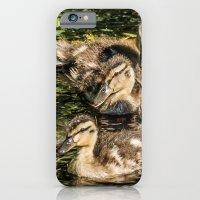 Ducklings iPhone 6 Slim Case