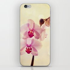 Orchids iPhone & iPod Skin