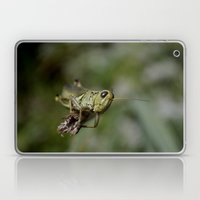 Grasshopper Close Up Laptop & iPad Skin