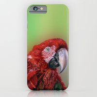 iPhone & iPod Case featuring Ara  macao oil5013 by S-Schukina