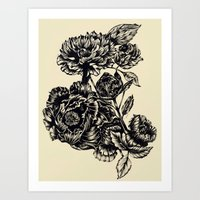 Peonies, black & white  Art Print