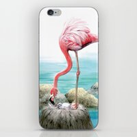 fenicotteri rosa iPhone & iPod Skin