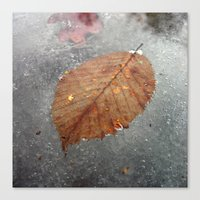 cold winter III Canvas Print