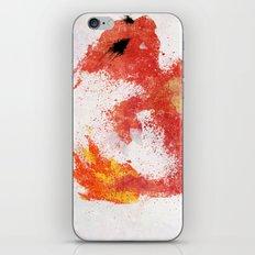 #005 iPhone & iPod Skin