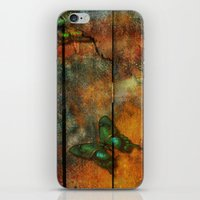On The Fence iPhone & iPod Skin